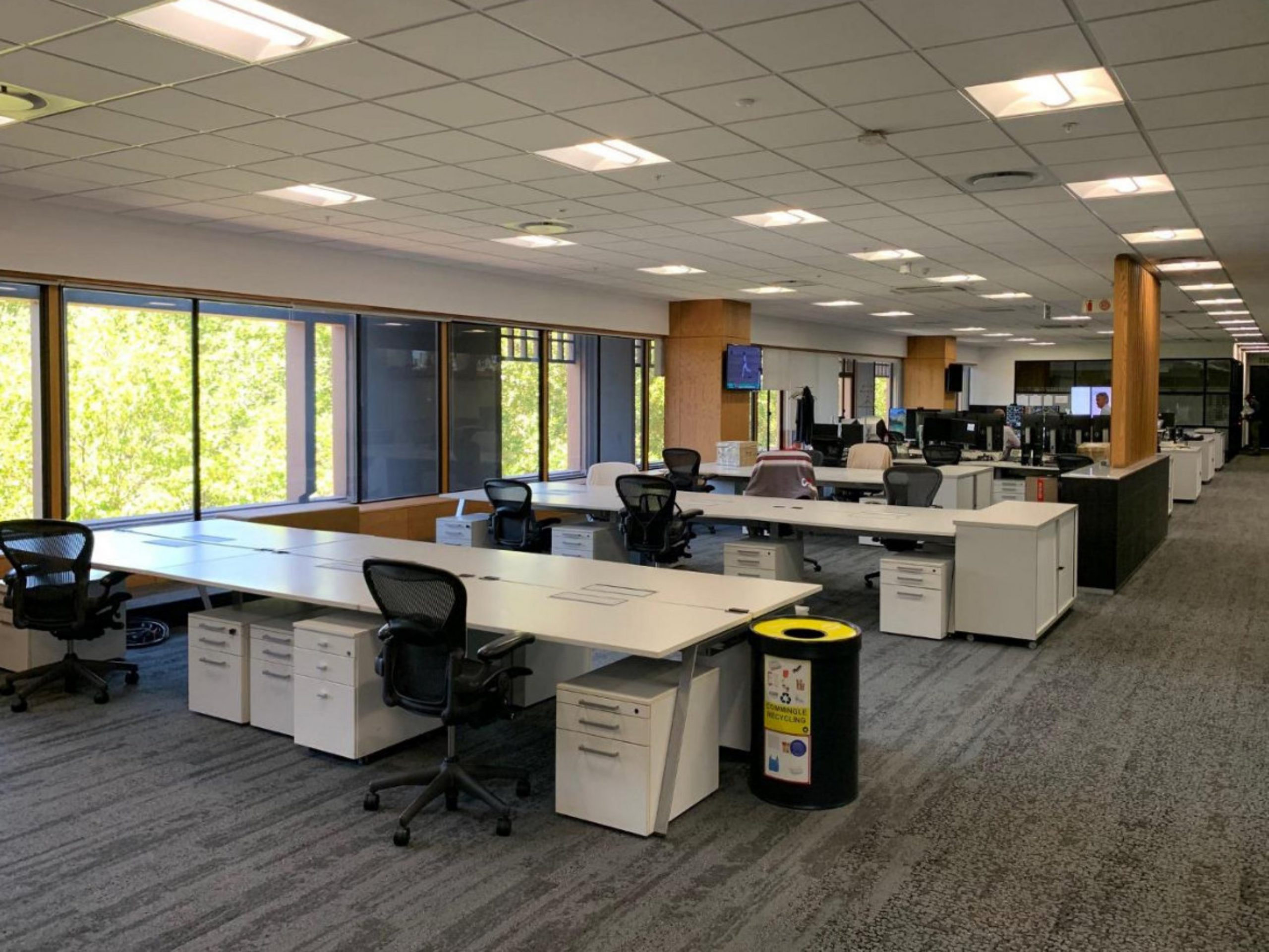 1,642 m² Office Space to Rent Newlands I Great Westerford