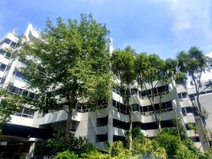 217 m² Office Space to Rent Sunclare Building Claremont