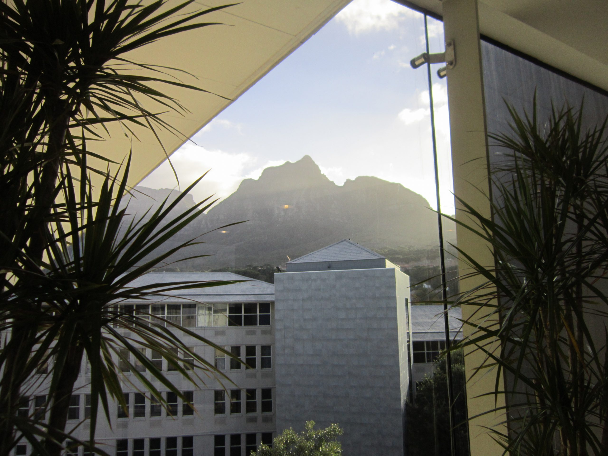1,187 m² Office Space to Rent Belmont Office Park Rondebosch